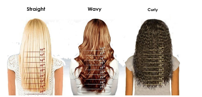 Premierlacewigs Hair Length Chart